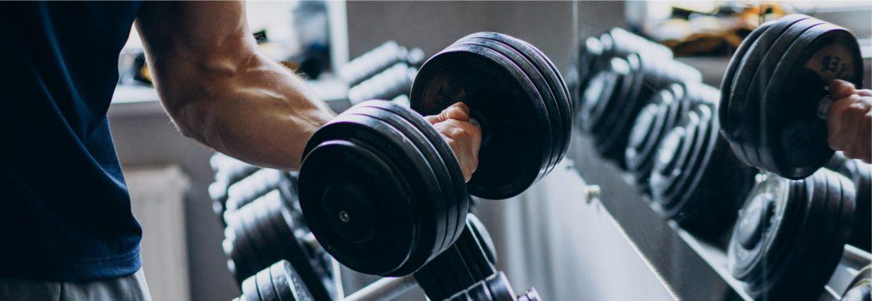 Choose online fitness program that suit your needs